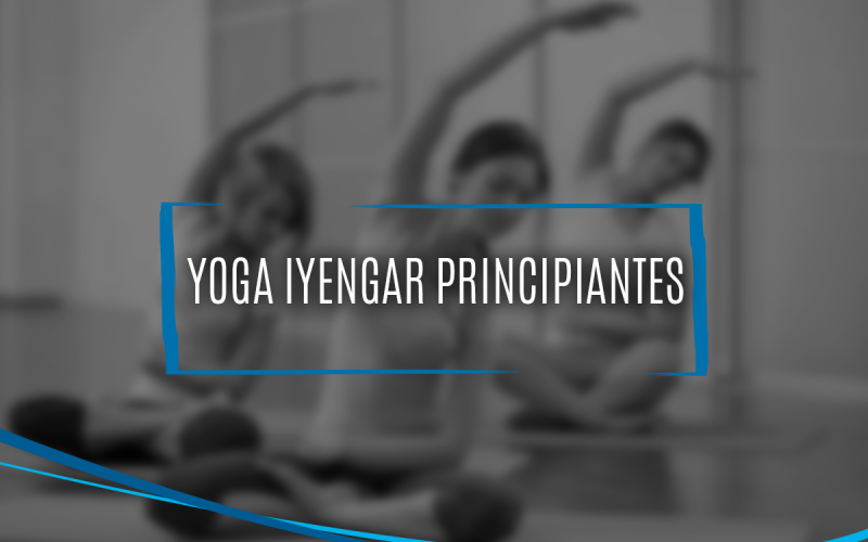 Clases Yoga Iyengar Principiantes Yoga Tlalpan Sur